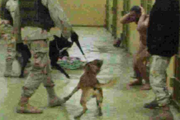 L'inferno del carcere di Abu Ghraib: selfie e risate mentre i detenuti morivano