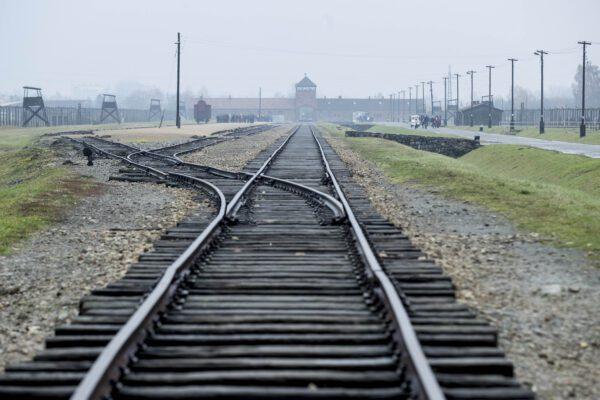 """Predappio nega contributo per la visita ad Auschwitz. """"Iniziativa di parte"""""""