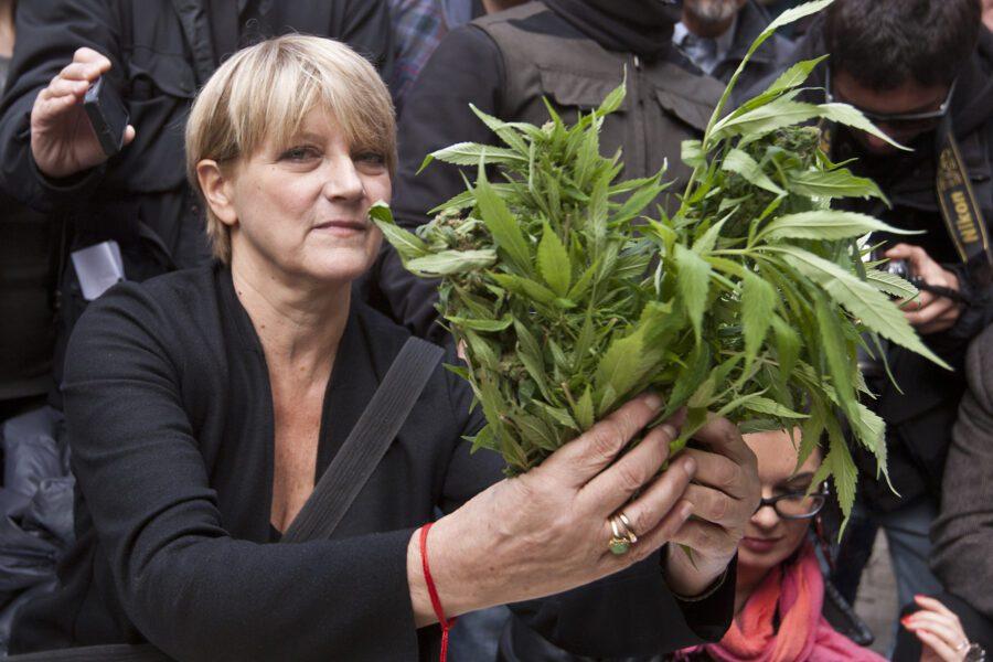 La Cassazione dà ragione a Marco Pannella, non è reato coltivare cannabis