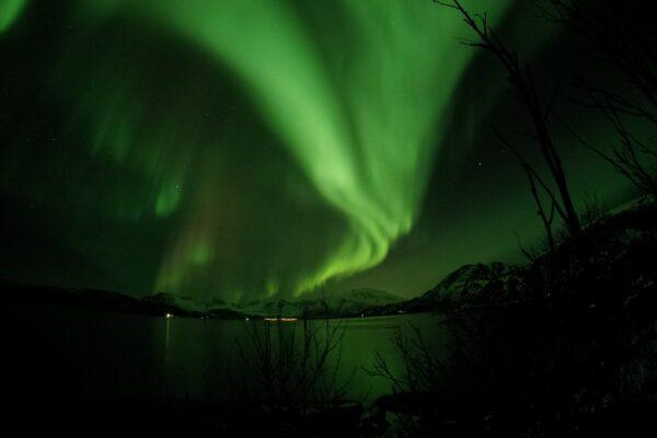 Lo spettacolo della danza dell'aurora boreale al Polo Nord