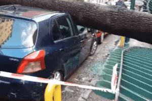 Napoli, maltempo killer: uomo morto schiacciato da albero