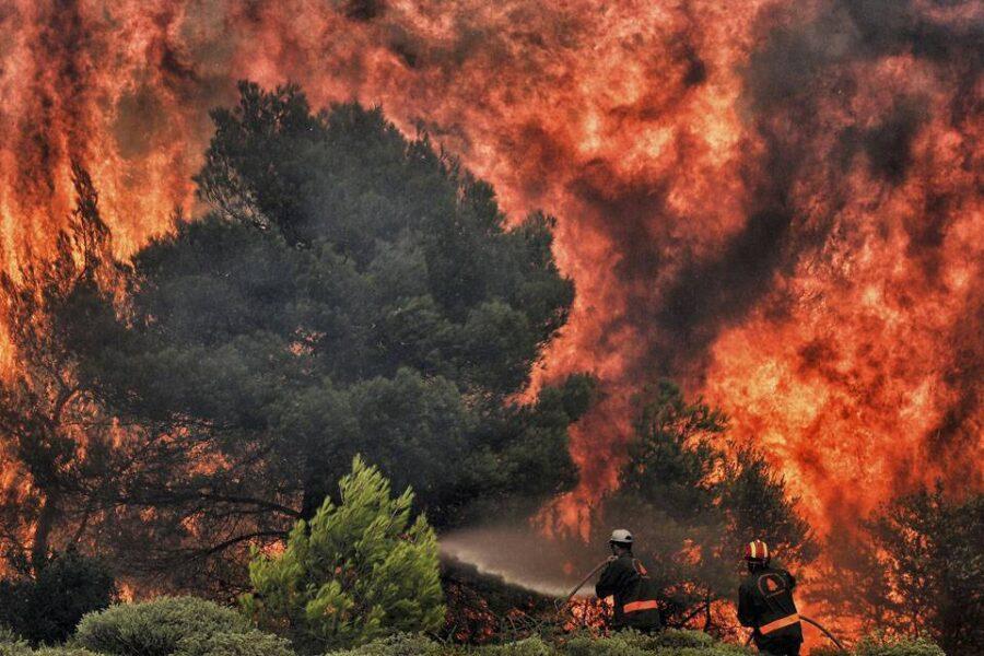 Emergenza incendi, nel 2019 più di 20 milioni di ettari di foreste bruciate
