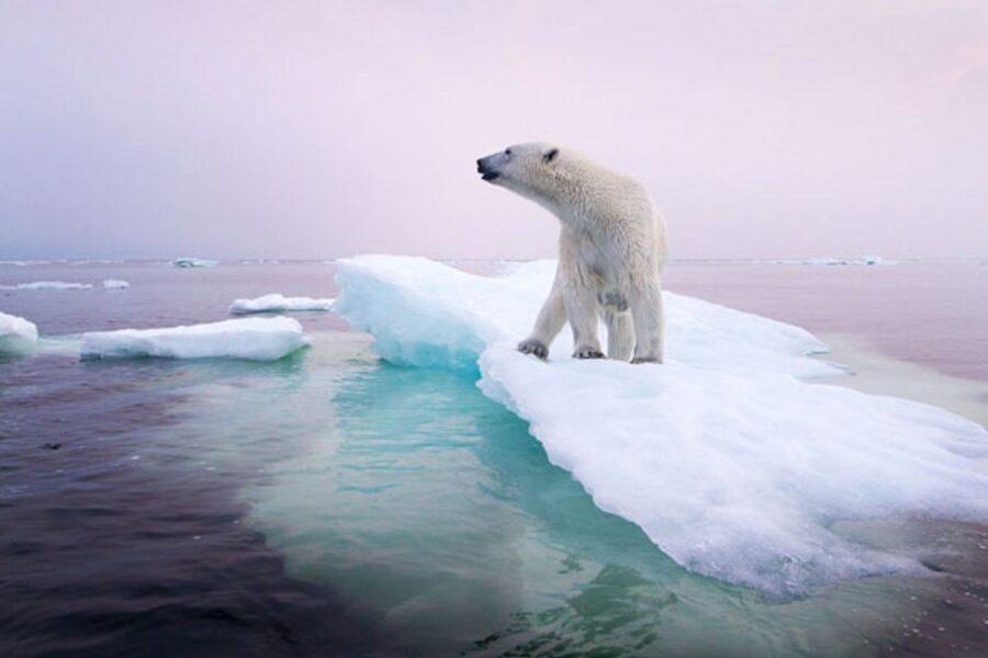 Clima: il 2019 è fra i tre anni più caldi della storia