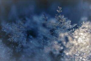 Arriva il freddo dal Polo Nord, temperature in calo di 5 gradi