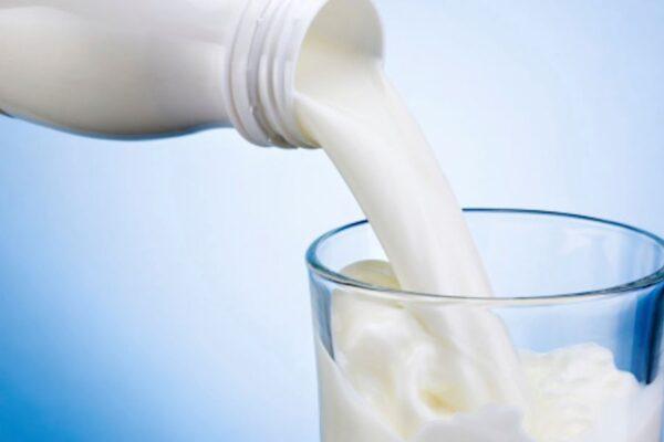 Business del latte, colpo ai Casalesi: 7 arresti tra cui noto imprenditore
