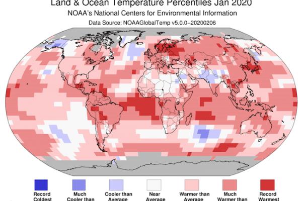 Gennaio 2020 è stato il mese più caldo della storia: nell'Antartide per la prima volta temperatura superiore ai 20 gradi