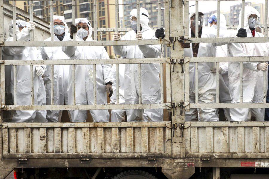 Coronavirus contagia l'economia, l'Italia si prepari a reagire