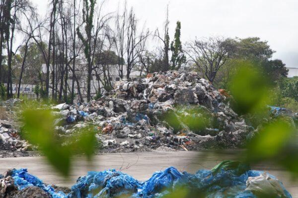 Greenpeace, traffico illecito di rifiuti tra Italia e Malesia: 1.300 tonnellate di plastica smaltite illegalmente