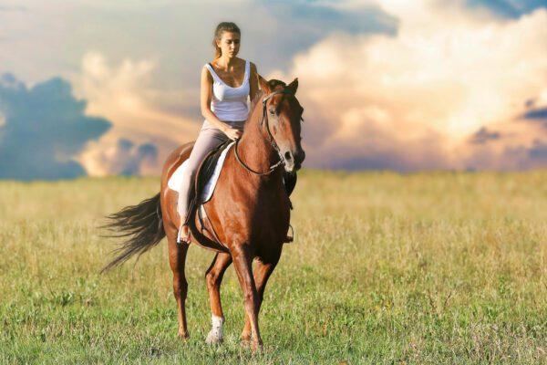 Il dramma delle scuole di equitazione, costi alti e nessun aiuto