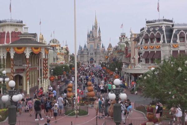 L'odissea di 200 ragazzi italiani, licenziati da Disney World e bloccati negli Stati Uniti