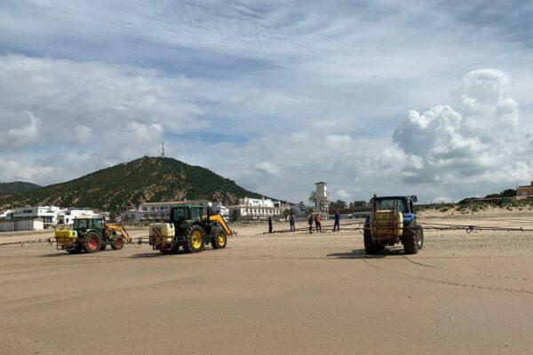 Spruzzano candeggina sulle spiagge per disinfettarla: ecosistema a rischio