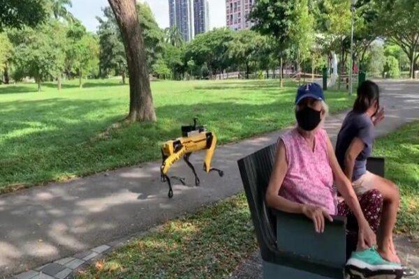 Parchi aperti: il cane-robot fa rispettare le distanze