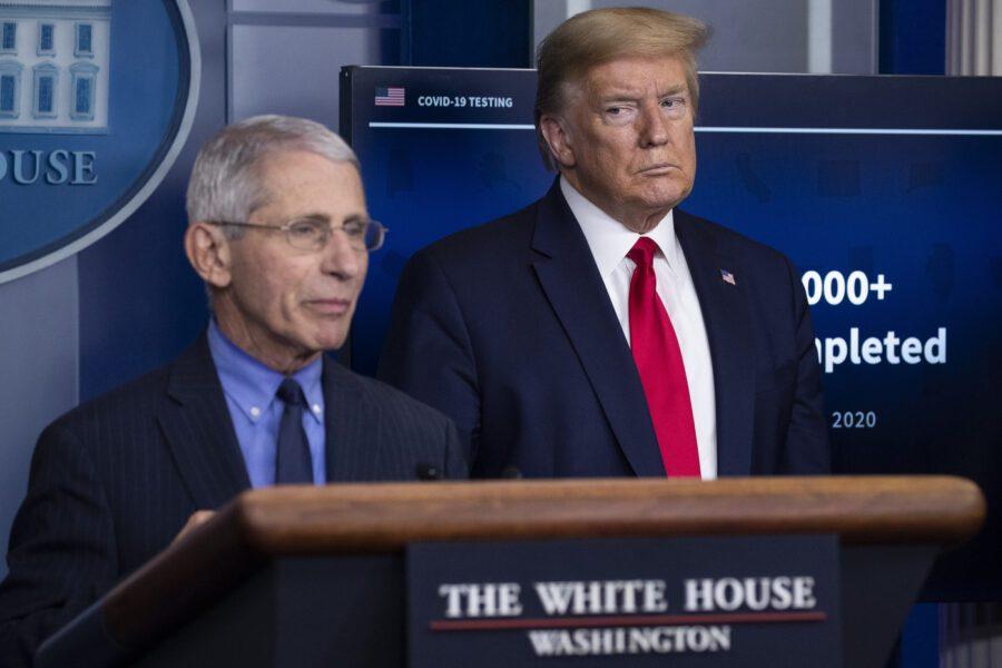 """Coronavirus creato in laboratorio, anche Fauci smentisce Trump: """"Non ci sono prove"""""""