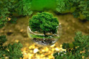 Far ripartire l'economia ma pensando all'ambiente, il manifesto delle aziende italiane