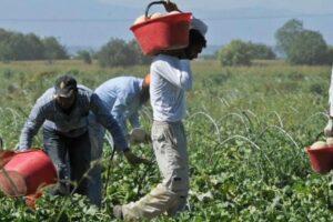 Regolarizzare i migranti è un vantaggio per la nostra economia