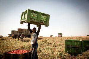 Per festeggiare questo 1° maggio regolarizzare i lavoratori stranieri