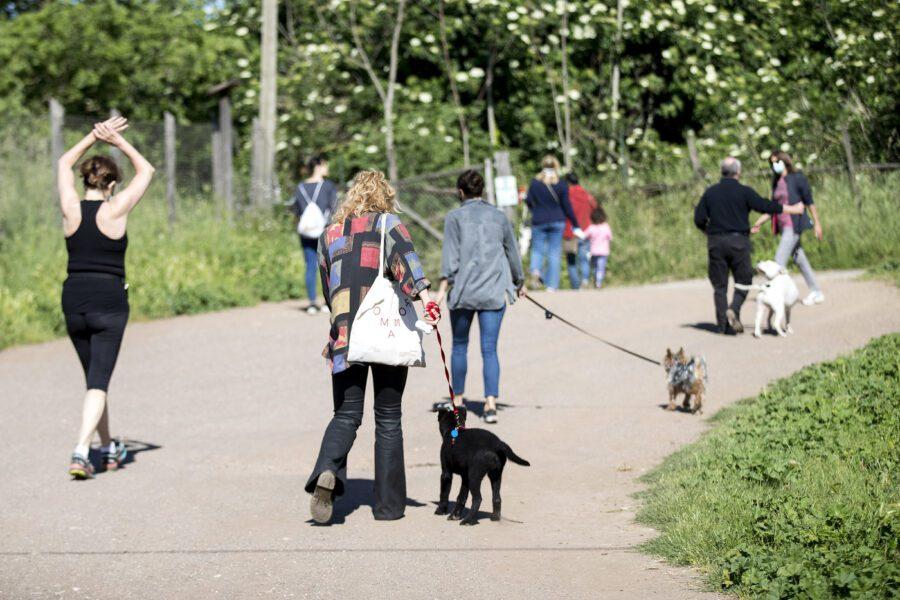 Fase 2, dall'attività nei parchi all'accompagnamento a lavoro: le nuove disposizioni del Viminale