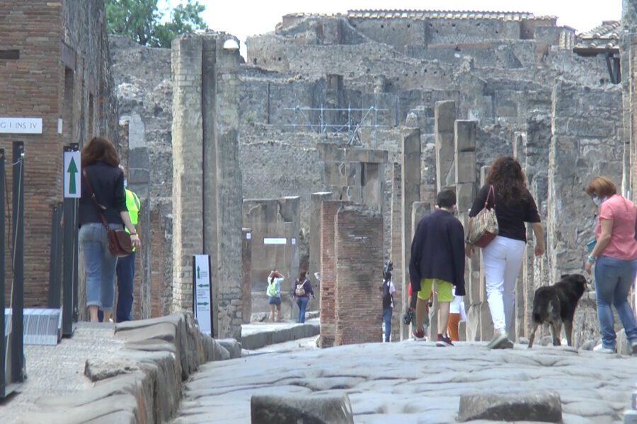 """Riapre il parco Archeologico di Pompei: """"Nuovi percorsi e scoperte per ripartire in sicurezza"""""""