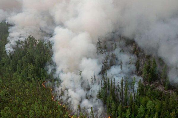 Nuovo disastro ambientale in Siberia: tornano gli incendi, ed è molto peggio di un anno fa