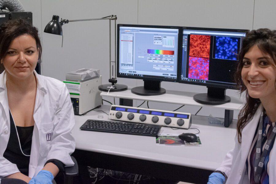 Sinapsi artificiale ibrida, a Napoli l'eccezionale studio dei cervelloni rientrati che collega le protesi al cervello