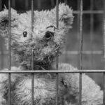 Storia di Pippo e Katy, ragazzini con genitori in cella e abbandonati dallo Stato