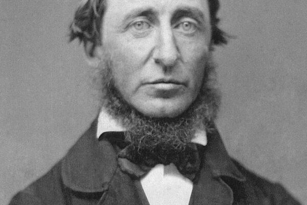 La ribalta di Thoreau, precursore dell'ecologismo e maestro di nonviolenza