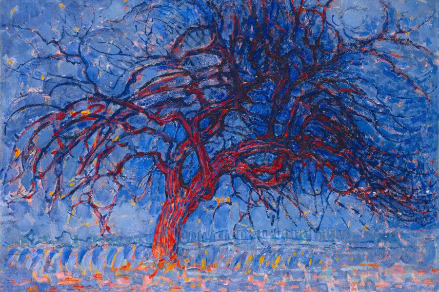 """""""Il canto degli alberi"""", una favola onirica sulla diversità e sull'adattamento biologico agli spazi"""