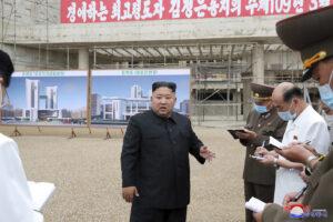 Coronavirus, oltre 16 milioni di casi nel mondo: primo 'sospetto' in Corea del Nord