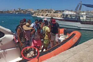 Sbarcati a Lampedusa con bagagli e barboncino, lo strano caso dei migranti-turisti tunisini