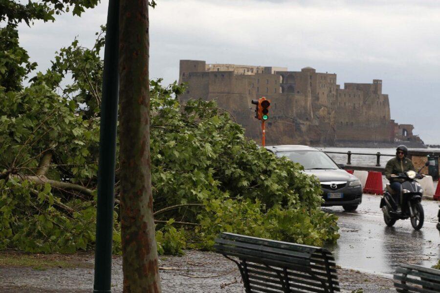 I semafori restano spenti e gli alberi cadono: casi emblematici della Napoli di oggi