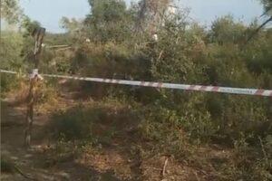 Il video del bosco di Caronia in cui sono stati trovati Viviana e Gioele