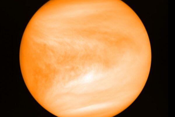 """Venere, scoperte possibili tracce di vita: """"Tracce di fosfina nell'atmosfera del pianeta"""""""