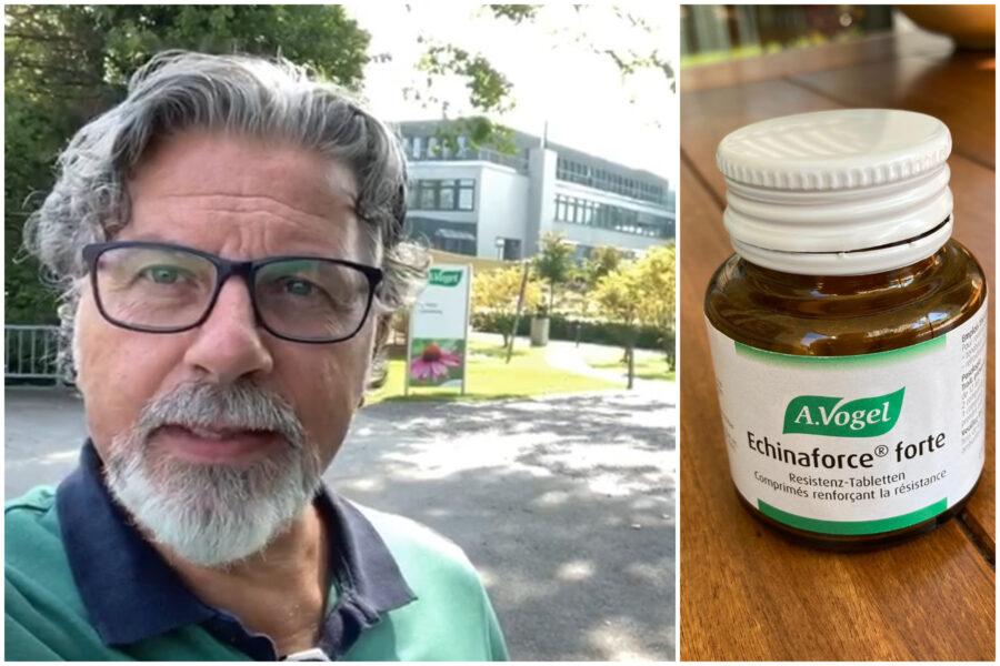 """Echinaforce, in Svizzera è assalto al preparato di erbe contro il Coronavirus: """"Efficacia sull'uomo non dimostrata"""""""