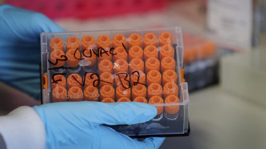 Coronavirus, la corsa al vaccino di Johnson&Johnson: primi lotti nel 2021