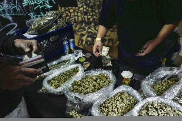 """Cannabis light, la Cassazione conferma: """"Serve una regolamentazione"""""""