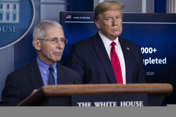 Trump minaccia di licenziare Fauci, alta tensione alla vigilia dell'Election Day