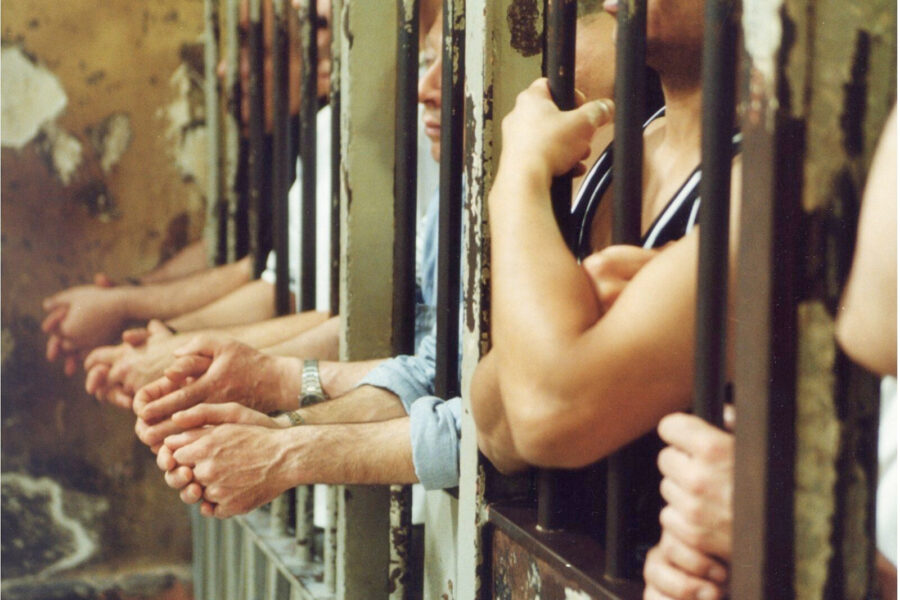 Indignano più le bestie che gli uomini in gabbia