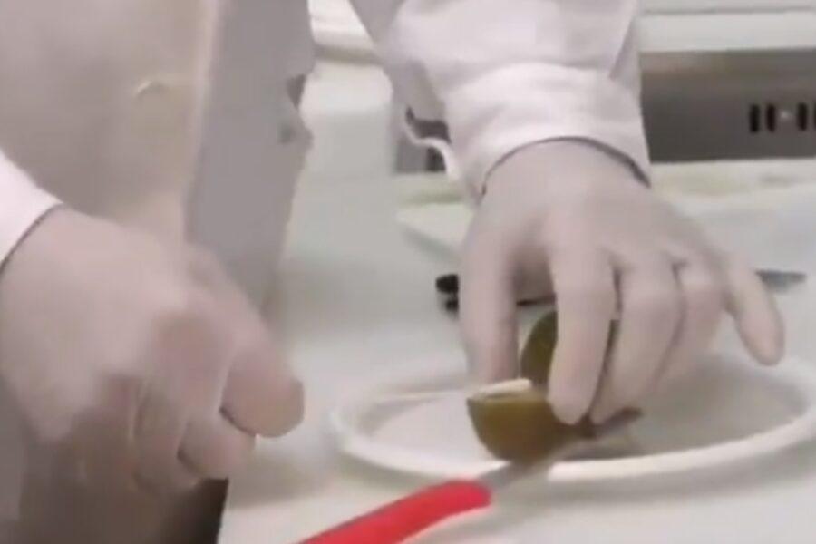 Kiwi positivo al Coronavirus, la bufala diventata virale