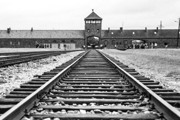 Auschwitz non è solo alle nostre spalle, il mostro è ancora vivo