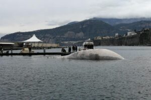 Balena a Sorrento, è un secondo esemplare: è la più grande mai arrivata nel Mediterraneo