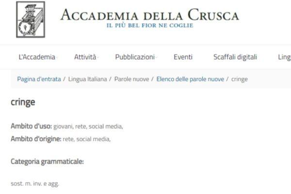 """La bufala dei giornali su 'Cringe': perché l'Accademia della Crusca non l'ha """"certificata"""" una parola italiana"""