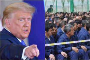 """Usa-Cina, l'ultima 'bomba' di Trump: """"In corso genocidio contro gli uiguri"""""""