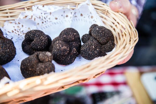 Napoli, scoperta la truffa del tartufo: venduta a 1990 euro al chilo falsa specie pregiata