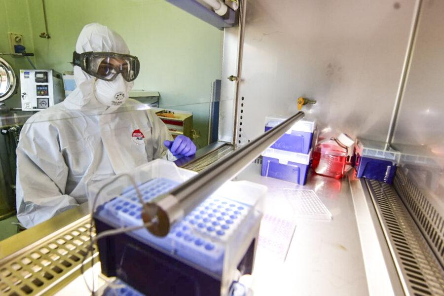 Anticorpi monoclonali, Speranza dà l'ok alla distribuzione dell'arma contro il Covid