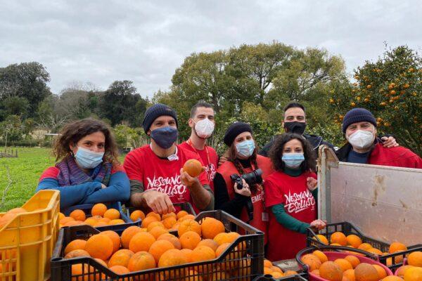 Dall'antico giardino di Capodimonte gli agrumi contro la crisi: donati a 500 famiglie in difficoltà