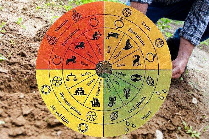 Agricoltura biologica, il Ddl spiegato in 5 punti dopo inesattezze e pratiche stregonesche