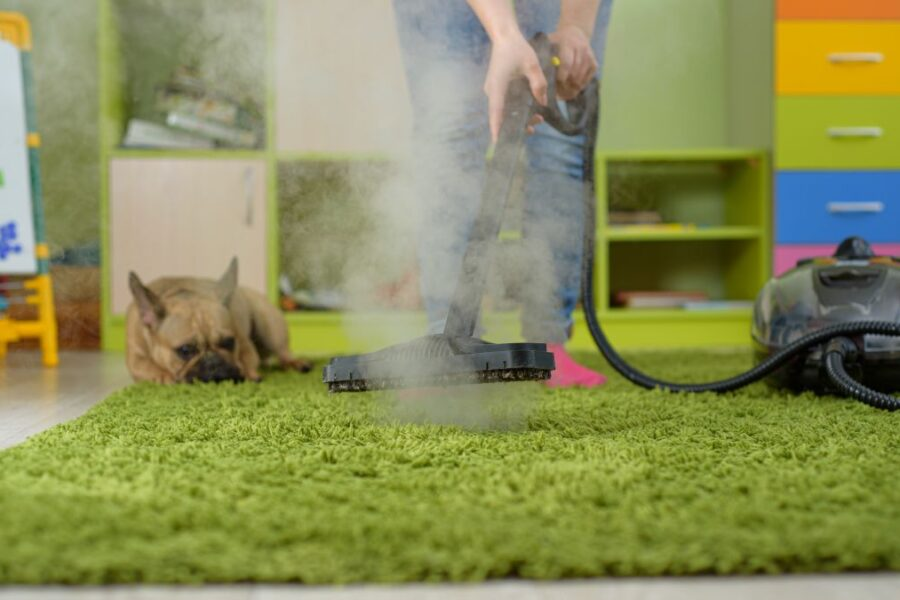 Woman cleaning carpet withsteam generator in the children room. destroying allergens – house dust mites and pet hair