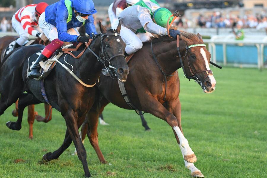 Domenica il Derby sale a cavallo: a Capannelle l'evento top