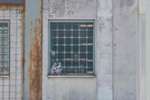 Lo 'stato di emergenza' dei diritti dei detenuti: il Covid alibi per limitare le garanzie