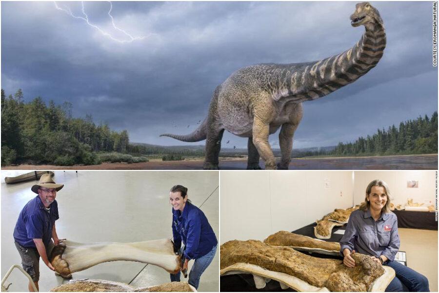 Scoperto dinosauro gigante, lungo quanto un campo da basket e alto come un edificio a due piani